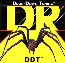 DR_Strings_DDT-main