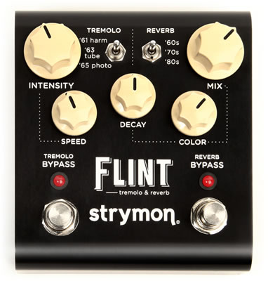 120709_strymon_FLINT-main